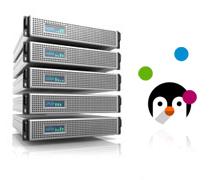 KVM Virtual Private Servers